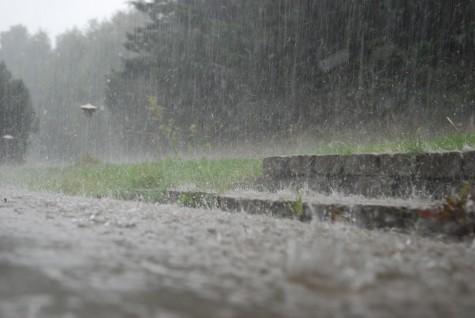 smaborn og berlin i regnvejr