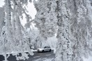 Galleri: Massiv rimfrost dækker dele af Tyskland den 3/12 2014