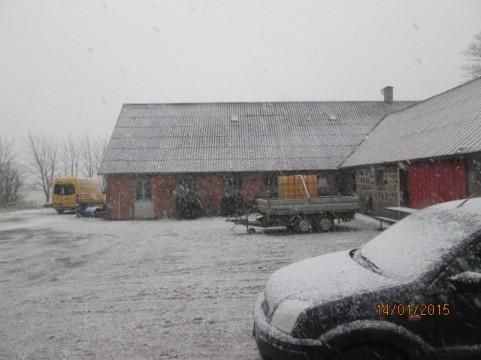 Gårdspladsen i snevejr