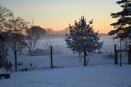 Vinter i HolmeOlstrup