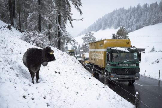 Sne i Lenzerheide i Schweiz den 22/10 2014