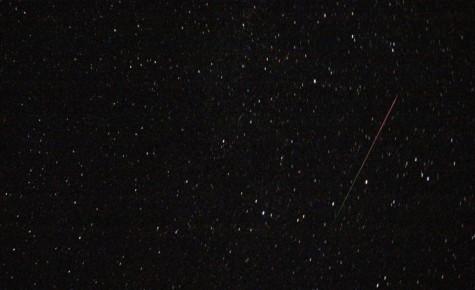 trækker torsk i land planetarium aalborg