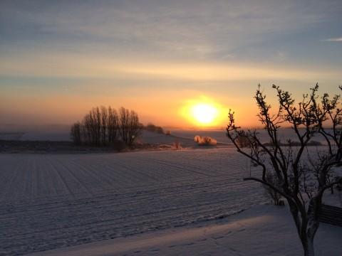 Veddelev vintersolopgang