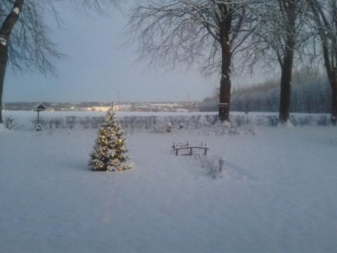 Dejlig vintermorgen med minus 12 grader