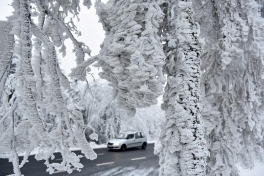 Rimfrost i Heissich Lichentau den 2/12 2014